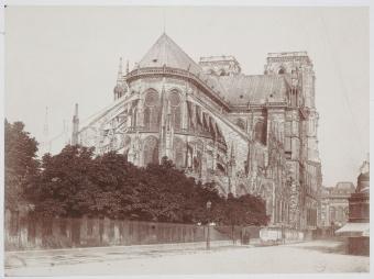 Regards dessinés sur Notre-Dame