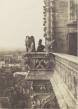 Dossier pédagogique Notre-Dame de Paris